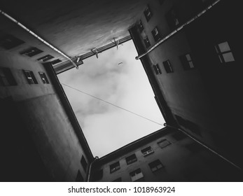 The walls of the old building against the background of Seagull flying in the sky. The view from the bottom up. Black and white photo.