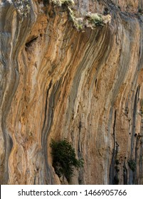 The walls of Samaria Gorge, Crete, Greece. Orange walls with trees.