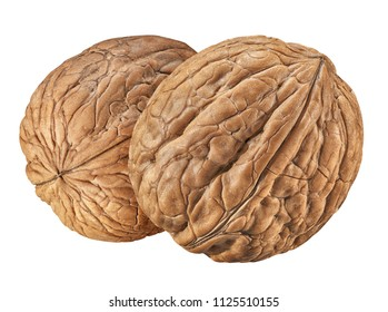 Walnut isolated closeup  on white background with clipping path. Nut macro. Walnuts as package design element collection. Full depth of field.