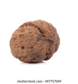 walnut isolated on the white background.