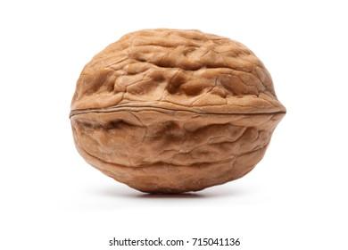 Walnut isolated on a white background.