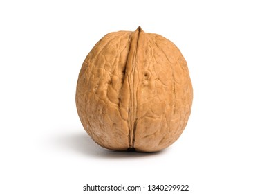 Walnut in shell isolated on white background
