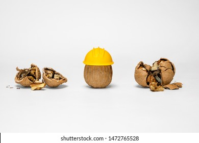 Walnut wearing PPE yellow hard hat for OSHA safety electrical job site LMS training