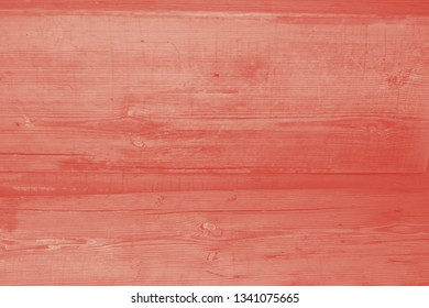 Walnut wood texture, old rustic surface with skratches. Coral duotone