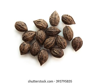 Walnuts from Japanese walnut (Juglans mandshurica var. sachalinensis) tree, commonly known as Oni-gurumi, isolated on white.  Naturally grows in forests. A walnut species native to Japan and Sakhalin.