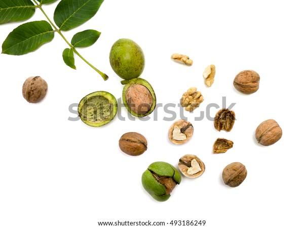 Walnuts (Juglans regia) with green leaf on white background. Flat lay