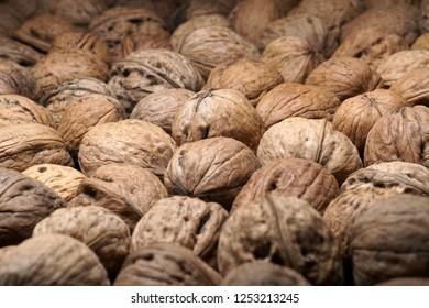 Walnuts in nutshell. Closeup. Selective focus. Healthy food concept.