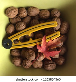walnuts and open walnuts in yellow container