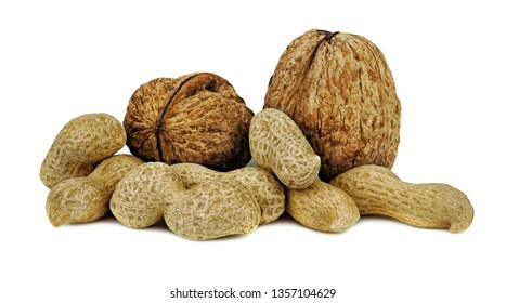 walnuts and peanuts with shells. Unpeeled walnuts and peanuts isolated on white background. Full depth of field.