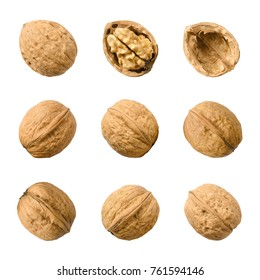 Walnuts, whole and opened, isolated on white background. Top views of the nuts and seeds of the common walnut tree Juglans regia, used as snack and for baking. Macro food photo close up from above.