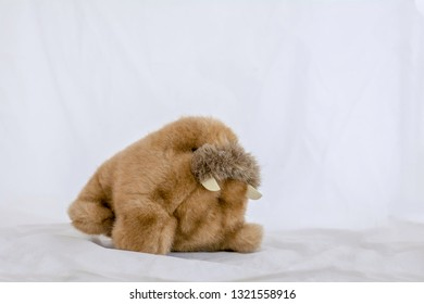Walrus doll on a white background