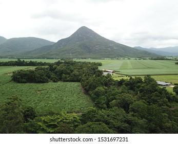 Walsh's Pyramid, Far North Queensland, Australia