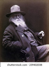 Walt Whitman (1819-1892) American poet, author, and journalist in 1877 portrait.