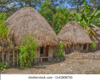 Wamena, Indonesia - January 23, 2015: Cottage covered with dry leaves of banana in the Dani tribe village.  Also spelled Ndani. Dani tribe home in Baliem Valley, West Papua