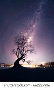 Wanaka tree in milky way