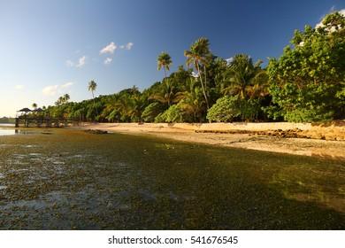 Wanci island - Wakatobi