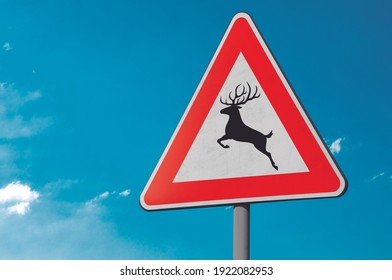 Wandering wild animal triangular sign with sky blue background