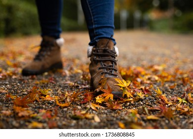 Wanderlust woman with adventure leather shoes walk on the way in fallen autumn leaves around the ground. outdoor activity. selective focus and blur background. space for text.
