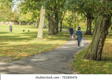 WANDSWORTH, LONDON: OCTOBER, 2017: Wandsworth Common next to Bellevue Road in south west London. A high street with coffee, fashion and food shops next to grassy field and woodland space.