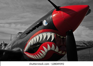 War bird Kittyhawk