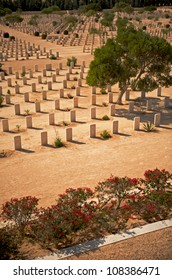 War graves in the Saharan Desert at the Commonwealth Cemetery in El Alamein, Egypt