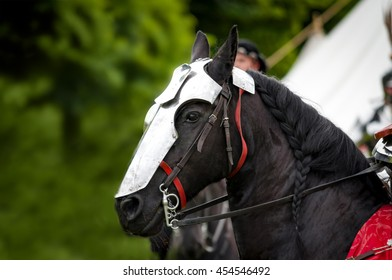 War horse, mounted by a knight in heavy armour, wearing a chanfron. The chanfron was designed to protect the horse's face, A decorative feature common to many chanfrons is a rondel with a small spike