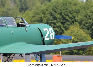 Warbird Airplane Vintage Green Number 28
