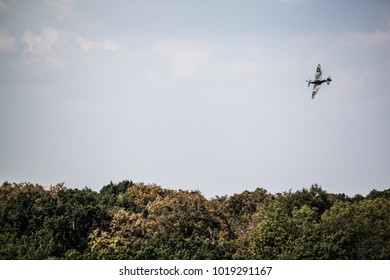 warbird flying over the trees