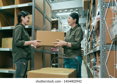 Warehouse coworker women passing cardboard box in large storehouse. young girl employee pushing cart walking in stockroom and stopping by colleague. elegant lady manager give parcels to staff.