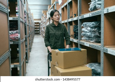 Warehouse worker woman taking package in shelf in large stockroom and pulling cart. elegant girl staff in storehouse walking in stockroom while pushing lots of carton boxes with products inside.
