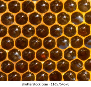 Warm colors, concave mirrors of the surface of honey in honeycombs and the rays of evening light reflected from them create a beautiful picture.