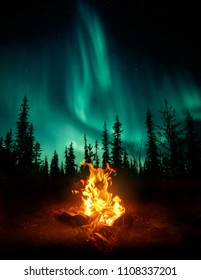 A warm and cosy campfire in the wilderness with forest trees silhouetted in the background and the stars and Northern Lights (Aurora Borealis) lighting up the night sky. Photo composite.