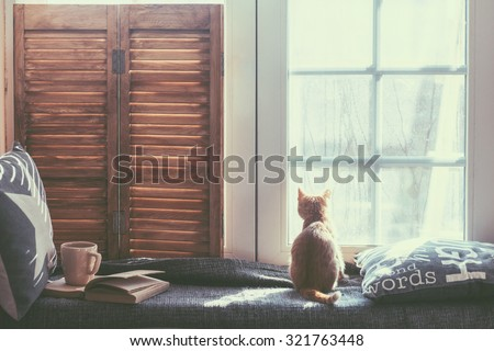 Warm and cozy window seat with cushions and a opened book, light through vintage shutters, rustic style home decor.