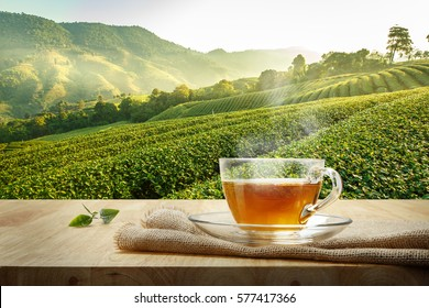 Warm cup of tea and organic green tea leaf on wooden table with the tea plantations background