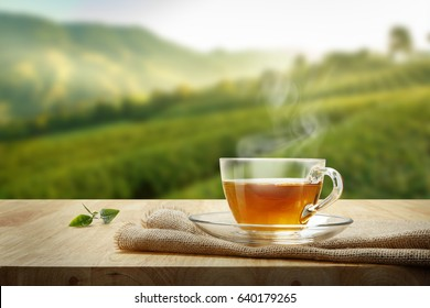Warm cup of tea and organic green tea leaves on wooden table with the tea plantations background with copy space