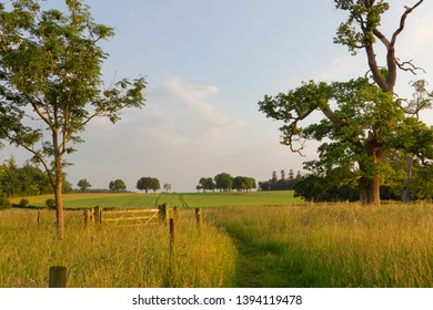 A warm evening sun shines on the fields trees and footpaths behind Oakley village hampshire