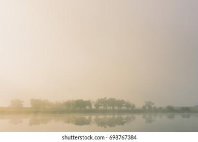 Warm sunlight through fog shines on lake