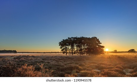 Warm sunrays over a tranquil moor during daybreak at Regte Heide, Goirle, The Netherlands