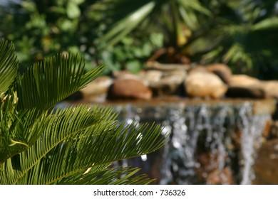 Warm Tropical Scene