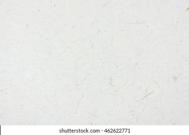 warm white rice mulberry flower rough paper petal and seed texture / recycle paper / craft or hand made paper / natural and eco friendly material