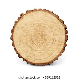 Warm wooden tree section with rings and texture isolated on white. Circular background with an organic feel.