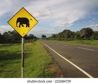 Warning; Elephants