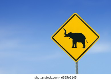 warning for elephants, yellow warning sign, warning sign, lable, Yellow warning sign, Yellow sign on the sky background