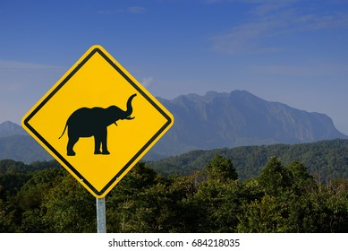 warning for elephants, yellow warning sign, warning sign, lable, Yellow warning sign, Yellow sign on the mountain background