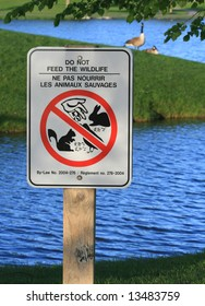 Warning sign in Andrew Haydon Park. Ottawa, Ontario. Canada.