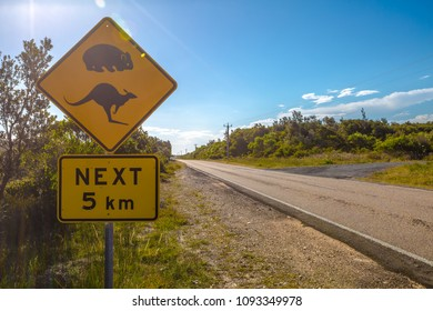 Warning sign for kangaroo and wombat crossing on Austalian countryside road.