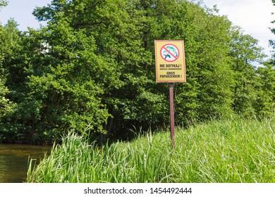 """Warning sign in polish language """"Nie dotykaj! Barszcz sosnowskiego grozi poparzeniem!"""" on the green meadow, warning about giant horseweed"""