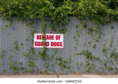 """Warning sign reading """"Beware of Guard Dogs"""" mounted on an overgrown fence."""