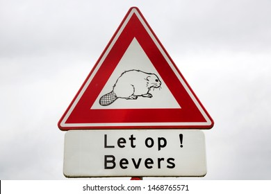 warning traffic sign 'let op bevers, meaning: watch out, Beaver crossing wild European or Eurasian beaver, Castor fiber