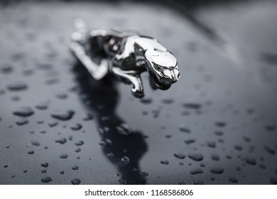 Warsaw, Poland - August 25, 2018: Hood ornament (jumping Jaguar) on a Jaguar car. . Founded in 1922 Jaguar is a British luxury car manufacturer based in Coventry, England.